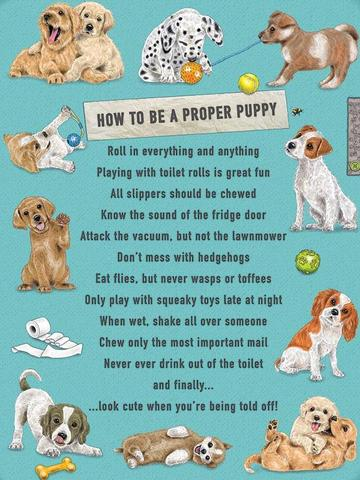How To Be A Proper Puppy Cute Sign